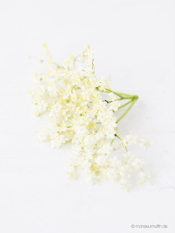 Holunderblüten | elderflower | © monsieurmuffin